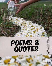 Poems & Quotes...