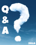 Questions and Answers to the Questions