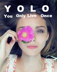 YOLO (One Direction)