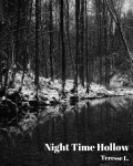 Night Time Hollow