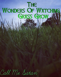 The Wonders Of Watching Grass Grow