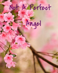 Not A Perfect Angel ☼AFI☼