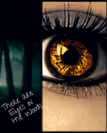 There Are Eyes in the Woods