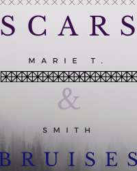 Scars & Bruises Book 1: Scarred & Bruised Series