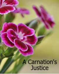 A Carnation's Justice