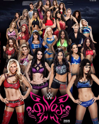 wwe divas facts about them