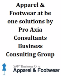 Pro Axia Consultants