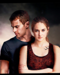 A divergent highschool