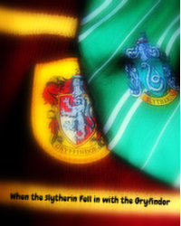 When the Slytherin fell in love with the Gryffindor
