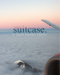 suitcase // niall horan