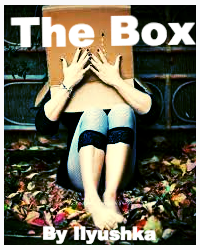 The Box (a short story)
