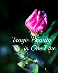 Tragic Beauty in One Line