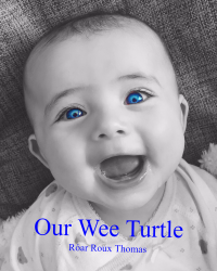 Our Wee Turtle