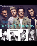 How to be secretly famous  -1D