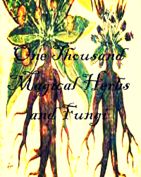 One thousand Magical Herbs and Fungi-Herbology Textbook