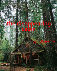 The Disappearing Cabin