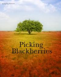 Picking Blackberries (A Poetry Writing Competition Entry)