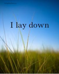 I lay down (A Poetry Writing Competition Entry)