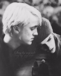 The last year- Dramione