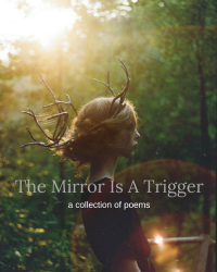 The Mirror Is A Trigger