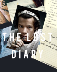 The lost diary • Harry Styles