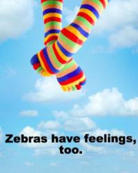 Zebras have feelings, too