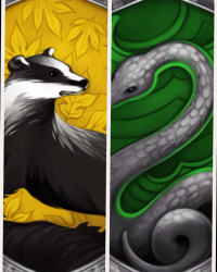 The Slytherin and the Hufflepuff