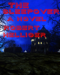 The Sleepover A novel
