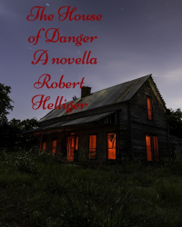 The House of Danger A novel