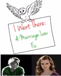 I Went There: A Marriage Law Fic