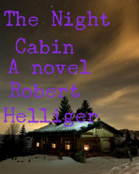 The Night Cabin A novel