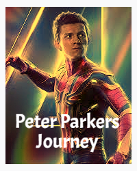 Peter Parkers journey (after Avengers Infinity War)