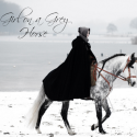 Girl on a Grey Horse