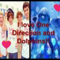 1danddolphins2