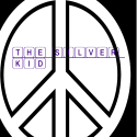 TheSilverKid12