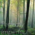 >Imperfect<