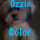 Ozzie Color