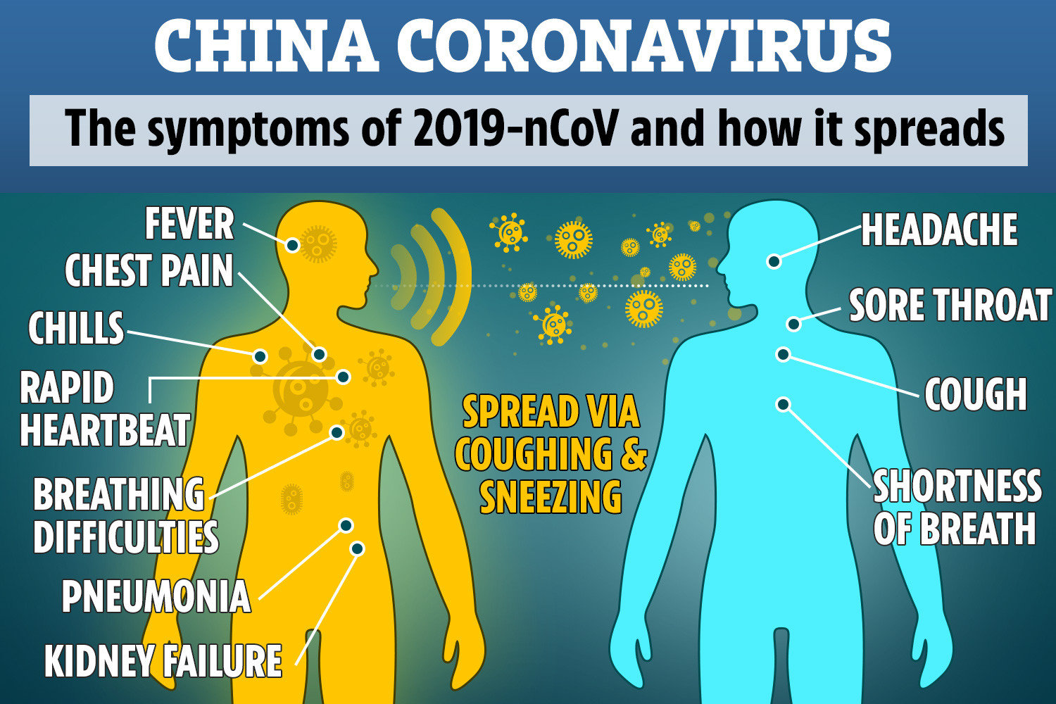 What is corona virus & How To Protect Him
