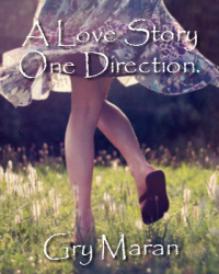 A Love Story - One Direction.