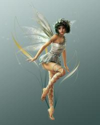 Lexi the firefly fairy  : The twilight fairy