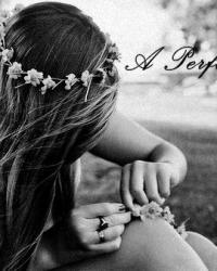 A Perfect Girl. - One Direction FF.