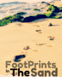 Foot Prints In The Sand