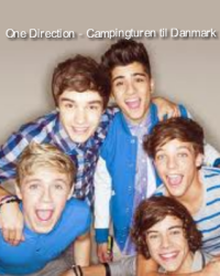 One Direction - Campingturen til Danmark
