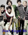 Don't forget me - One Direction