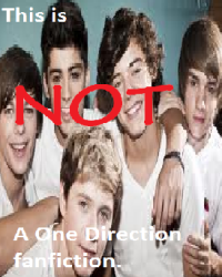 This is not a One Direction fanfiction.