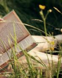 Writing For Reading. (Huffington Post)