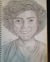 The drawing (1D)