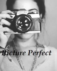 Picture Perfect (1D) 13+