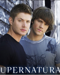 Meet the Winchesters