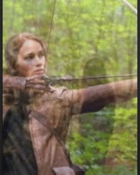 Hunger Games Fan Fiction (COLLAB)